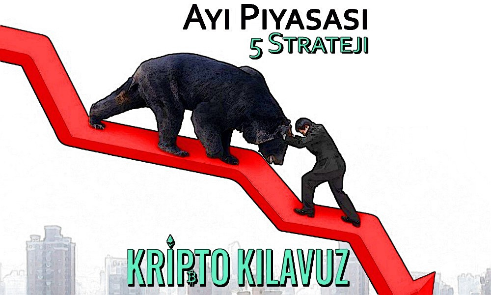 Ayı Piyasasında Yatırım Yaparken Kullanılabilecek 5 Strateji