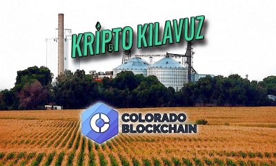 Colorado: Bipartisan Bill Tarımda Blockchain Çalışmasını Önerdi