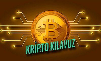 Bitcoin Analisti Ton Vays, Kripto Piyasası Dalgalanmasının Spesifik Katalizör Olmayabileceğini Söyledi!